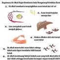 Air Alkali Ionisasi Membantu Mencapai Berat Badan Ideal
